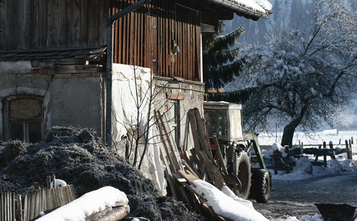 Fotografie Allgäu Dezember 2008